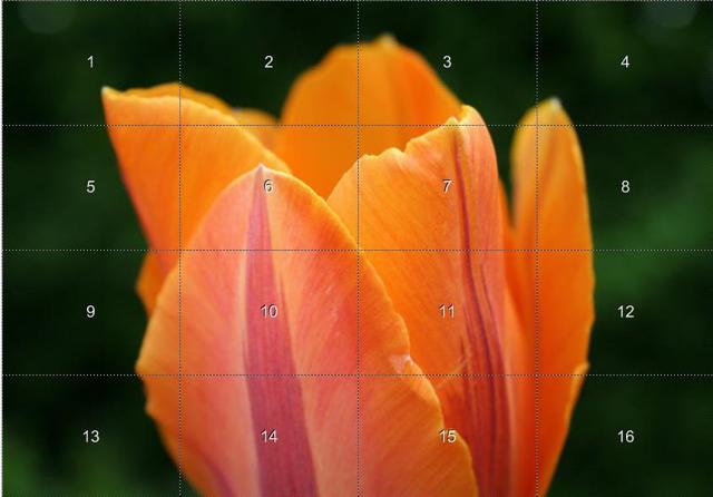 Как сделать увеличивающуюся картинку в excel?